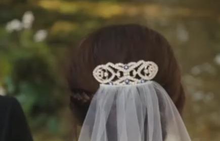 Vintage Hair Clip and Veil